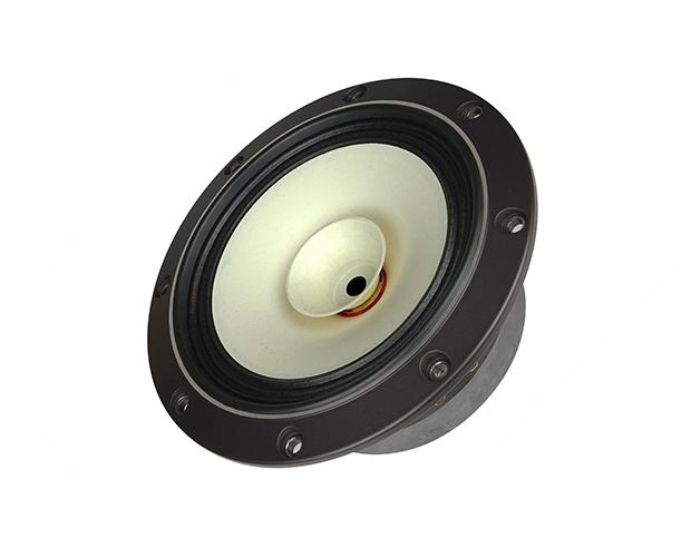 Fostex FE 168 NS - Breitband-Lautsprecher, 16 cm, 8 Ohm